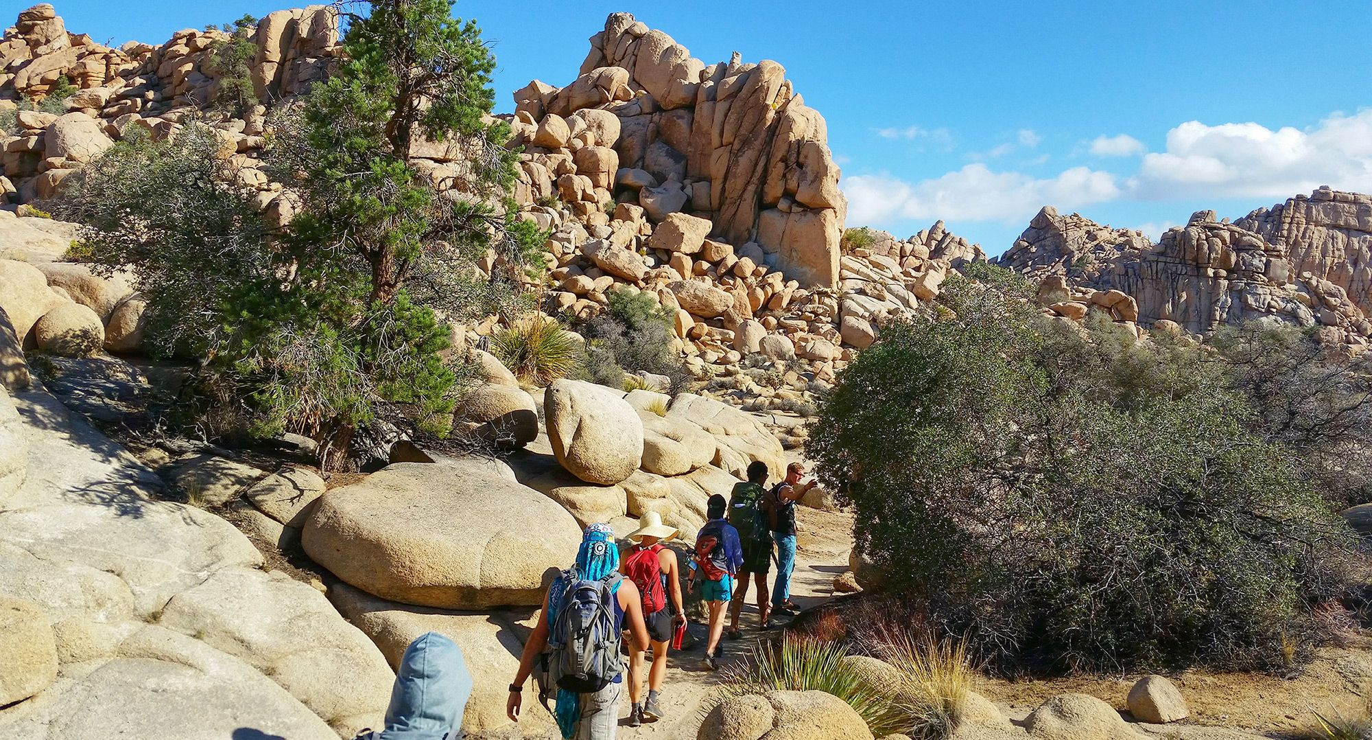 Naturalists at Large, Backpacking